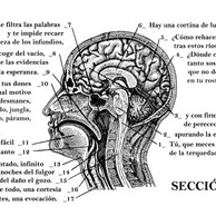 Proyecto Genoma Poético.jpg