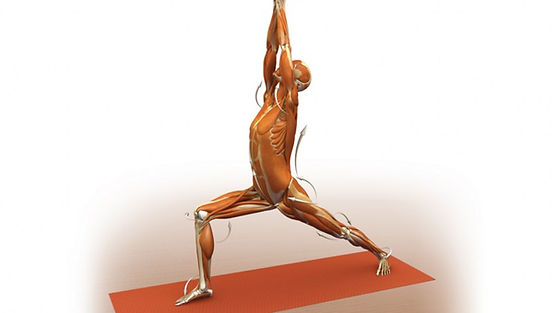 posture, tretching, mobilisation, yoga
