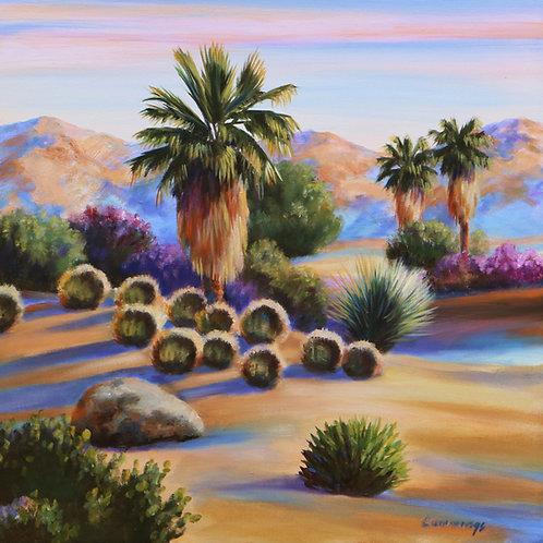 "Cactus Light  24"" x 24"" oil on Canvas"