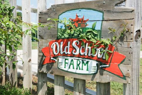 sb-nashville-old-school-farm-55-800x535.