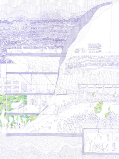scan815.jpg