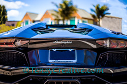 Lamborghinis and Palm Trees