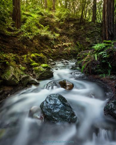 """Swirling Streams;""Mill Valley, California."