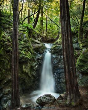 """""""Spring Falls,"""" Mill Valley, California."""