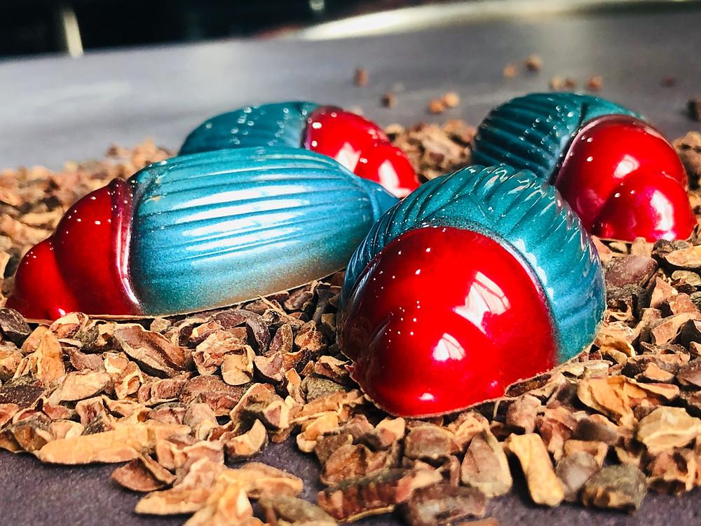 Milk Chocolate Cocoa Beetles