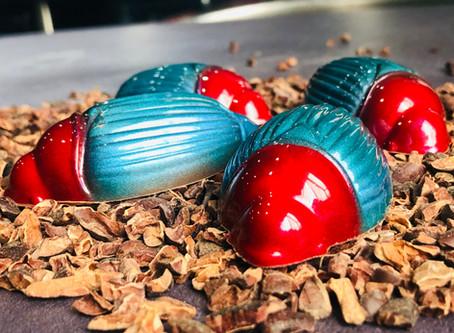 Cocoa beetles from Zanzibar