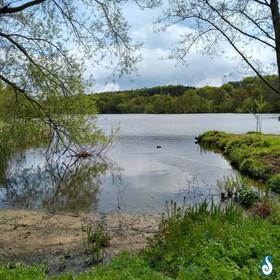 Yorkshire Sculpture Park lake