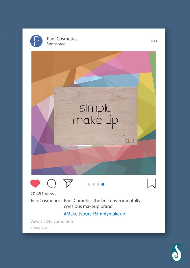 Pani Cosmetics - Instagram ad 4