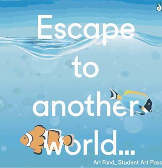 Social Media - Aquarium