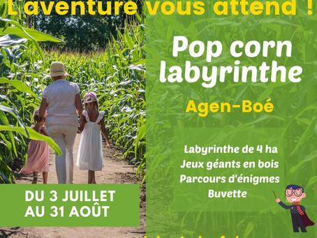 Nouveau : Ouverture d'un labyrinthe géant de maïs à côté d'Agen !