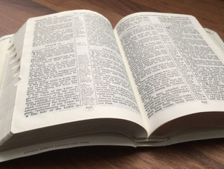The Importance of Words in Light of the WORD