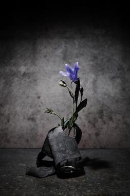 零×edalab. 皮と花