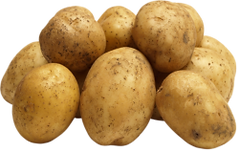 Potato-PNG-Transparent-Image.png
