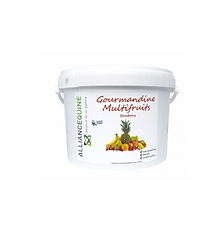 Friandises Gourmandine Multifruits - Alliance Équine
