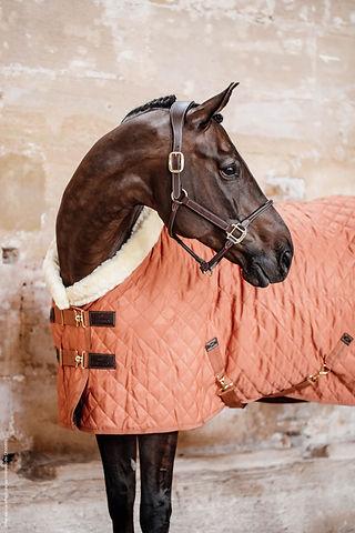 Couverture de Presentation 160g Orange d Automne- Kentucky Horsewear