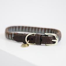 Collier pour Chien Triangle - Kentucky Dogwear
