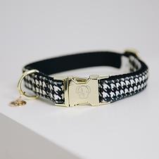Collier pour Chien Pied-de-poule Noir - Kentucky Dogwear