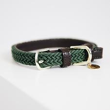 Collier pour Chien en Nylon Tressé Vert Olive - Kentucky Dogwear