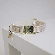 Collier pour Chien Laine Beige - Kentucky Dogwear