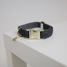 Collier pour Chien Laine Gris - Kentucky Dogwear