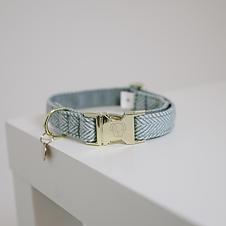 Collier pour Chien Laine Bleu - Kentucky Dogwear