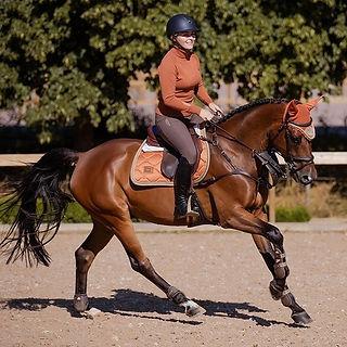 Tapis de Selle Bronze Gold - Equestrian Stockholm