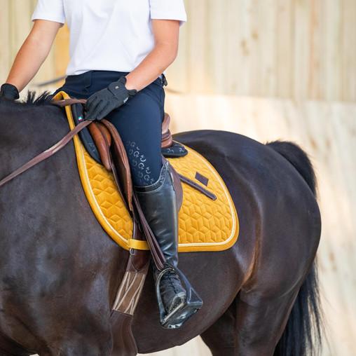 Quel tapis Velvet Kentucky choisir selon la robe de son cheval ?