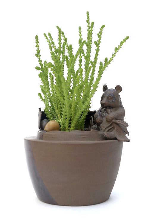 Planter with Bear
