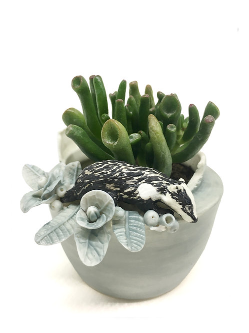 Planter with Badger