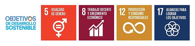 Objetivos de desarrollo sostenible.png