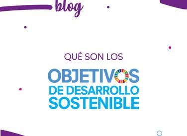 Qué son los Objetivos de Desarrollo Sostenible u ODS