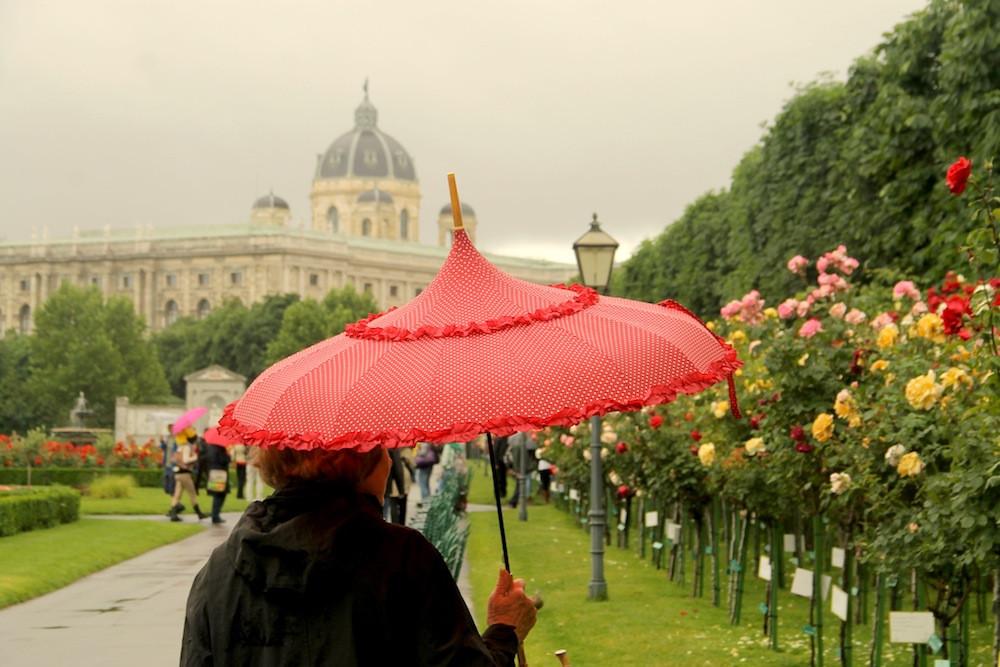 vienna,-ciudad-de-la-musica,-jardin-de-rosas,-vienna-bajo-la-lluvia,-amor,-palomas,-caballos,-mozart,-austria,-europa,-viajar-por-europa,-caminar-en-vienna