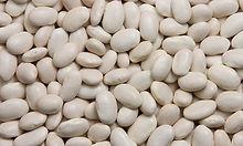 white kdney beans.jpg