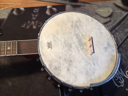Kasey Chambers' Oakridge banjo