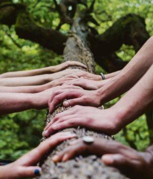 Para empresas: 10 habilidades para liderar en el nuevo mundo