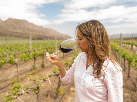 """""""La presencia de mujeres obligó a la industria del vino a tomar nuevos desafíos"""""""