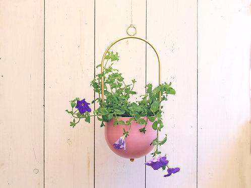Pink hanging planter