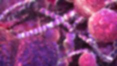 galleria 3.jpg