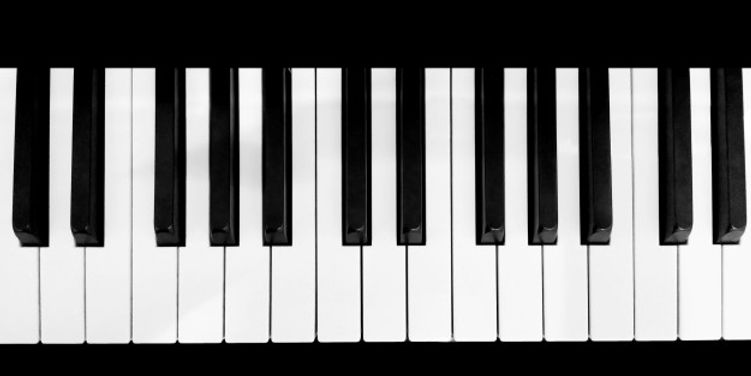 toetsenbordog.jpg