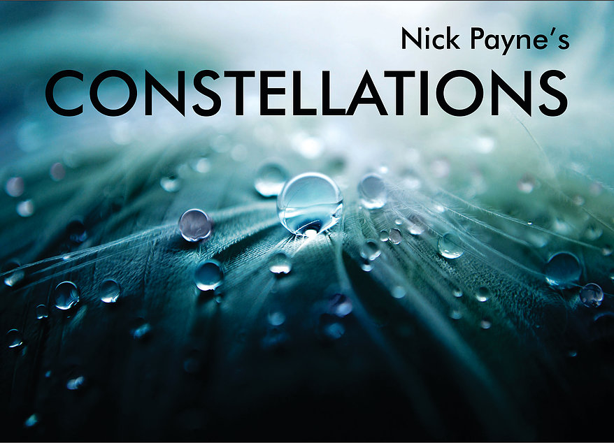 Nick Payne's Constellations