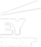 SeekPng.com_ey-logo-png_3378092.png