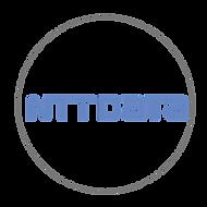 NTT DATA .png