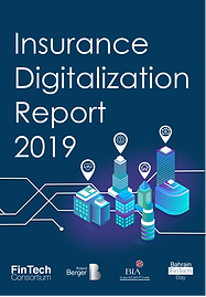 Insurance report (cover page)-02.png
