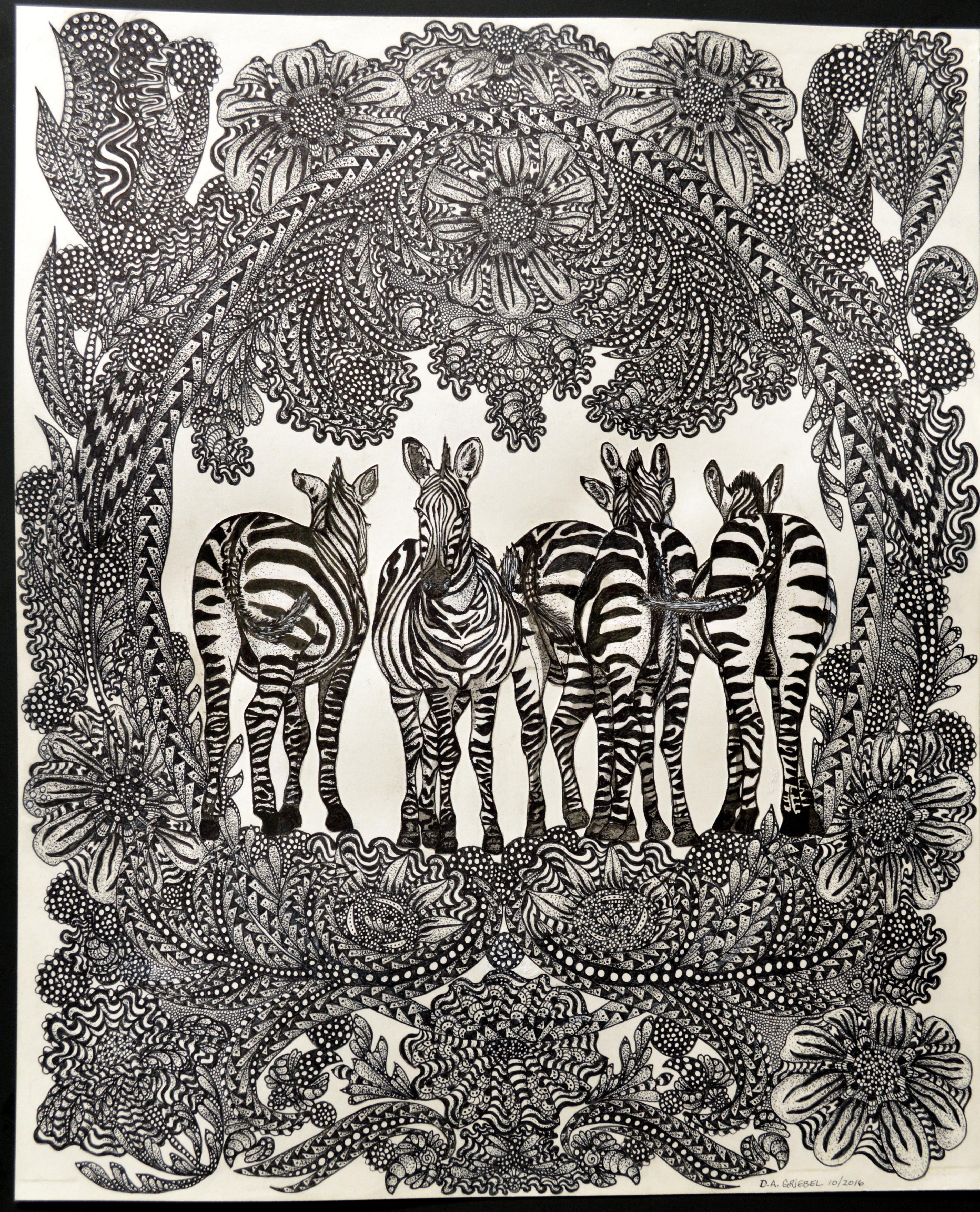 5 Zebras