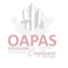 logo oapas sello.jpg