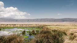 ngorongoro crater - 2013