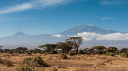 kilimanjaro - kenyan side - 2013
