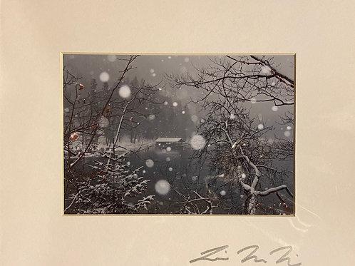 M8x10-3968 Snowy Lake Neuschanstein