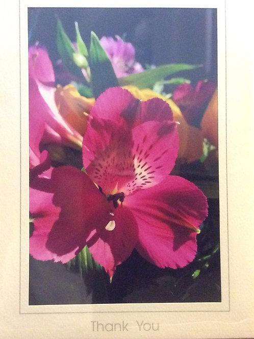 C-7727 Purple/Pink Eye of the bouquet