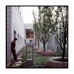 photographie ; corps ; arbres ; architecture ; nos corps ont leurs raisons ; 2021 ; collection oeuvres d'art UdeM